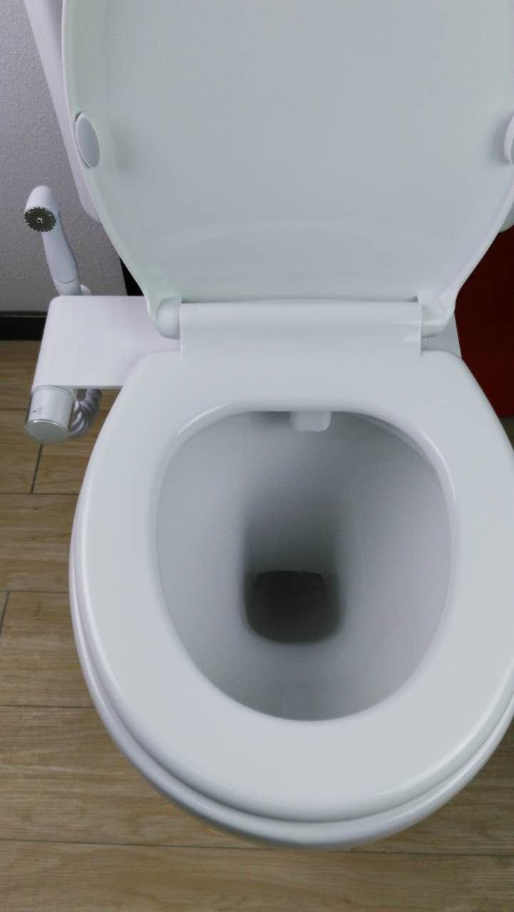 renaissance bidet 900 combination seat and hand bidet. Black Bedroom Furniture Sets. Home Design Ideas